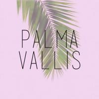 Palma Vallis